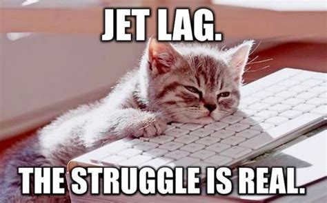 Jet Lag Meme - 14 jet lag jokes for anyone who s living the plane life