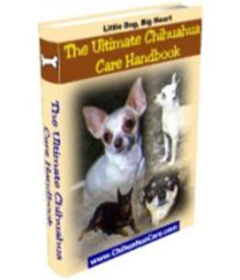 petchidog s book of chihuahua care books cool products