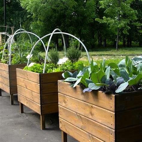 Vegetable Planters Wooden by Vegetable Planters