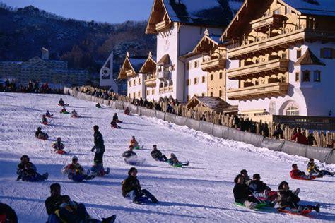 Metro Snow White Snow With Ginseng 60g traveler guide memorable in south korea