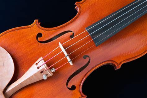 Biola Violin 1 4 merawat biola dengan jamur musicalization