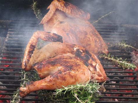 how to grill a turkey business insider