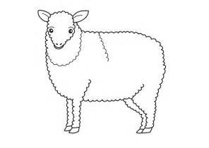 color sheep free of sheep coloring pages