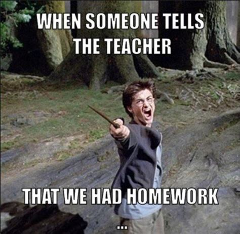 Homework Meme - should parents help their children with homework