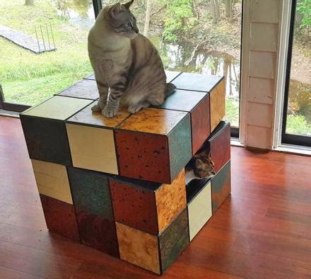 cat cube bed rubik s cube table cat bed