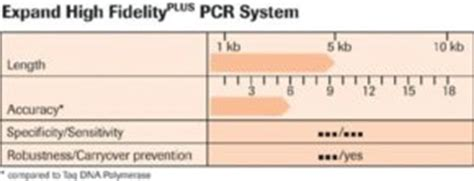Expand High Fidelityplus Pcr System Sigma Aldrich Expand Template Pcr System Roche