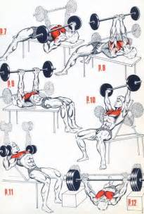 25 best ideas about chest workout for mass on