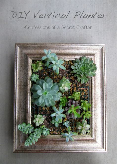 Vertical Succulent Planter Confessions Of A Secret Crafter Diy Vertical Planter