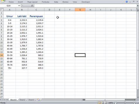 membuat database penduduk dengan excel cara membuat grafik piramida penduduk dengan excel
