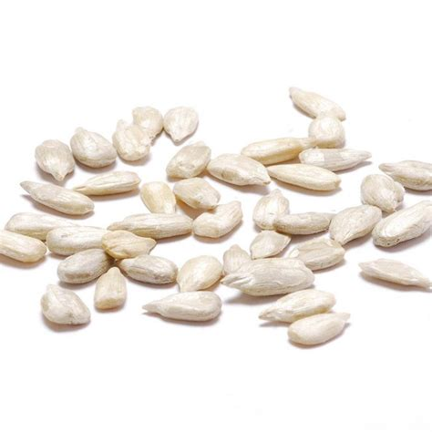 raw sunflower seeds shelled sunflower seed kernels