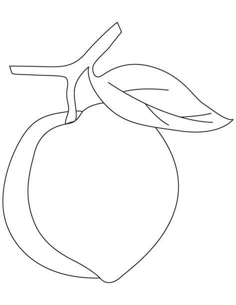how to draw fruit mango coloring pages