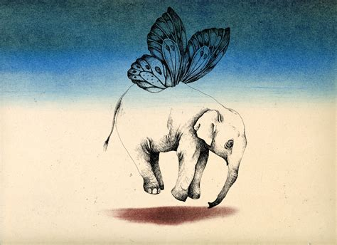 butterfly elephant tattoo nooshin safakhoo butterfly elephant