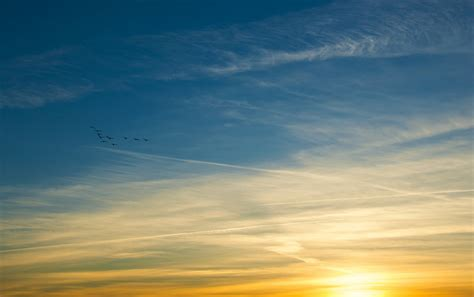 Sky Gold golden sky wallpapers golden sky stock photos