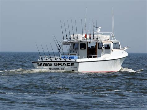 fishing boat charter chesapeake bay chesapeake bay charter fishing miss grace charters the