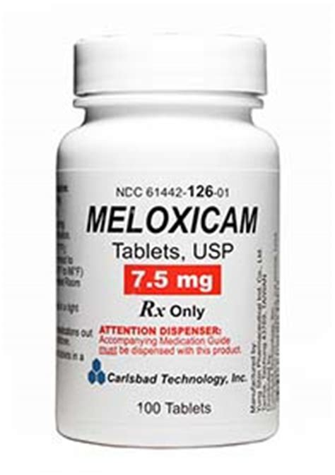 metacam for dogs mobic for dogs meloxicam or metacam can i give my mobic