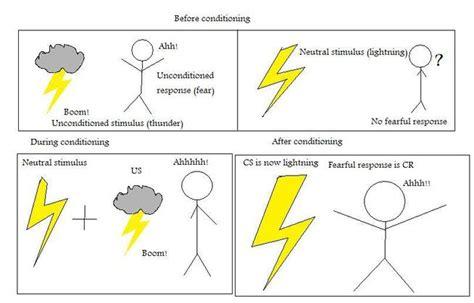 classical conditioning diagram classical conditioning www pixshark images