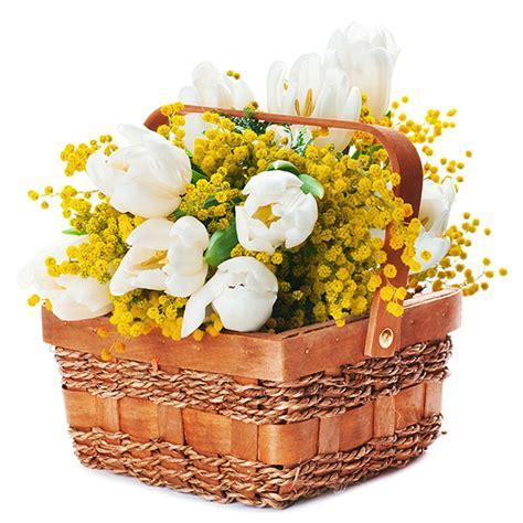 mazzo di fiori con mimose mazzi di fiori e bouquets di mimosa per festa della donna