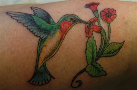 hummingbird tattoo designs free 18 stunning hummingbird ideas amazing ideas