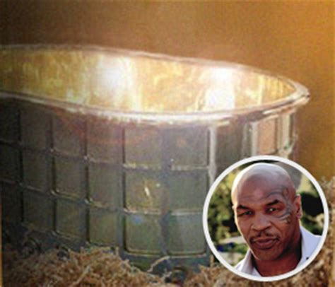 mike tyson gold bathtub 10 of the crazy and ridiculously expensive items