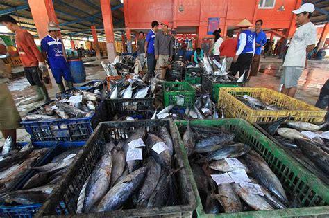 Tempat Pemanggang Ikan tempat pelelangan ikan di indramayu hiburan metrotvnews