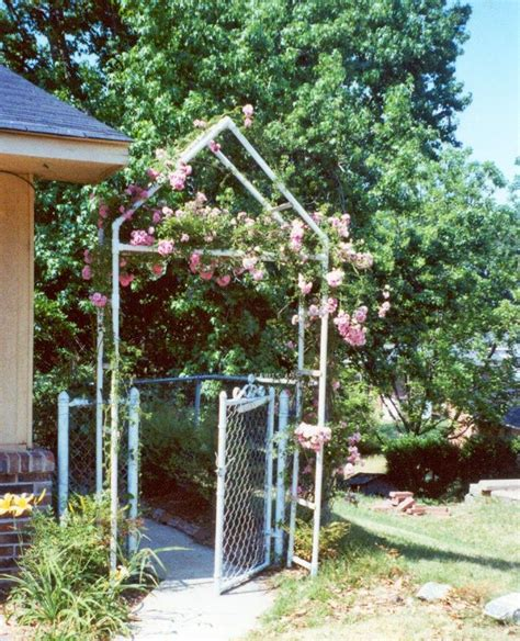 pvc pipe pergola 27 best ideas about pvc pipes on pvc pipes plants and tomato cages