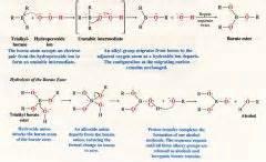 diff b w hydration and hydrolysis alkene addition mechanisms flashcards cram