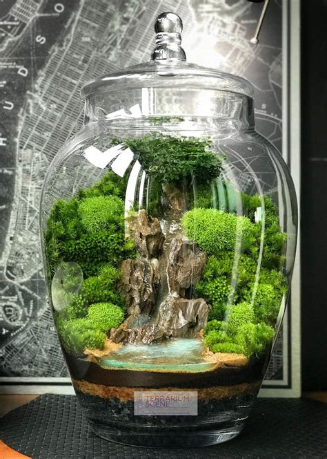 home decor mini terrariumwaterfall terrarium diy