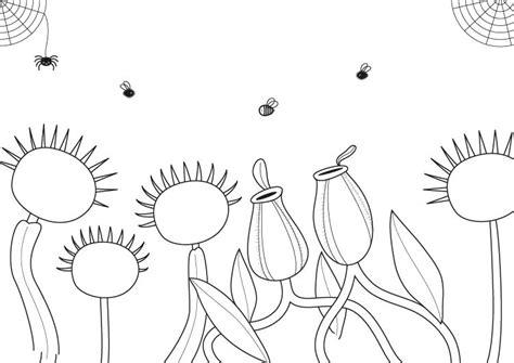 imagenes de animales y plantas para colorear imagenes para imprimir plantas imagui