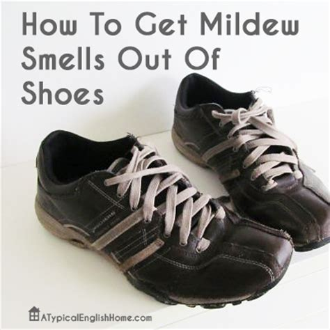 how to remove odor from shoes a typical home how to remove mildew smell from shoes