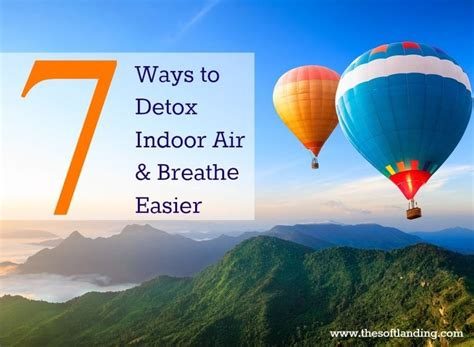 Detox Your Lungs And Breathe Easier by 448 Best To Images On Animal Rights