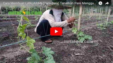 cara membuat lu hias menggunakan benang obras video tutorial membuat lanjaran para para tanaman pare
