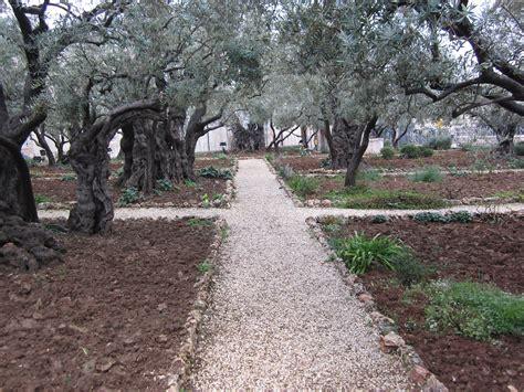 Garden Of Gethsemane Images by Garden Of Gethsemane And Daryl Byler