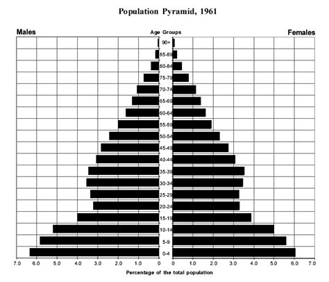Population Pyramid Worksheet by 13 Best Images Of Human Variations Worksheet Dominant