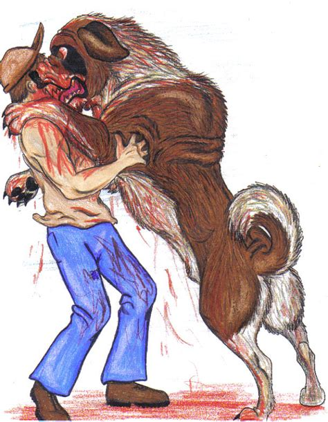 what of is cujo cujo attacks again by pookyhorse on deviantart