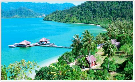 Backyard Nature Products Cubadak Island Sumatra Indonesia Travel Planner Pinterest