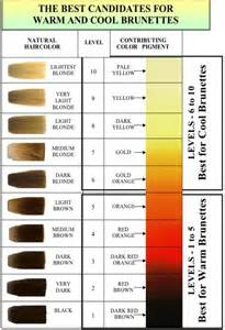 hair color level chart how to choose the right hair color with hair color level