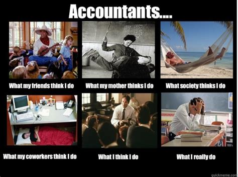 What My Friends Think I Do Meme - accountants what my friends think i do what my mother