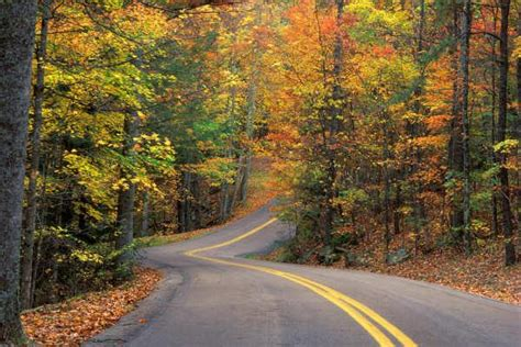 beautiful road all photos gallery beautiful roads beautiful roads wallpapers most beautiful roads