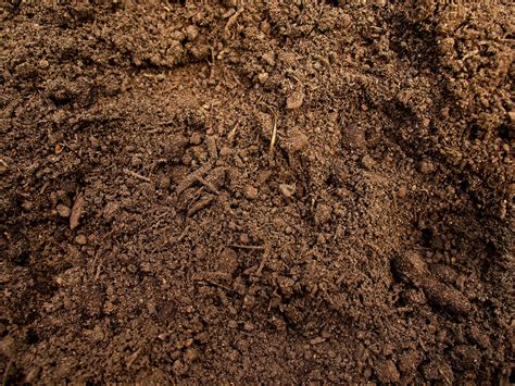 soil color soil color and quality elvis ripley flickr