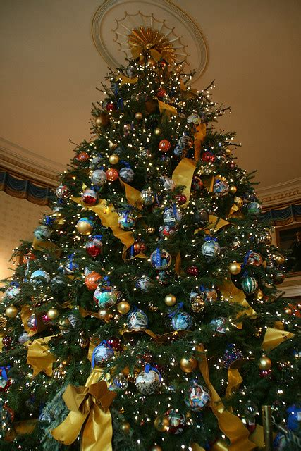 how to care for your christmas tree and holiday greens