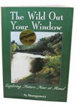 the in the window a novel books book window sy montgomery
