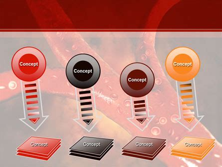 blood vessel powerpoint template backgrounds id blood vessels powerpoint template backgrounds 08778