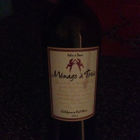 light red wine for beginners 99 best images about wines on pinterest bottle