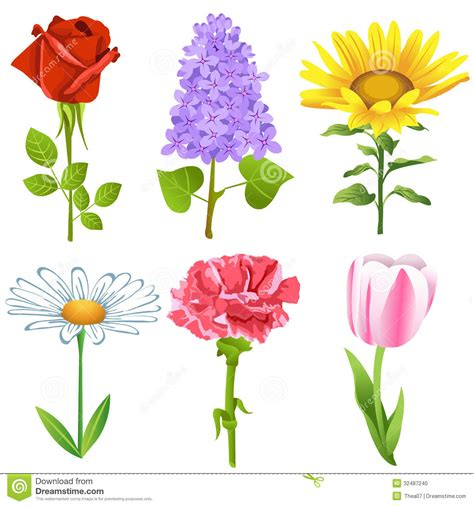 Set Flower flowers set stock photo image 32487240