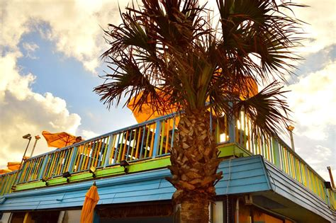 top beach bars our best bar pick makes the top 10 florida beach bars beaches bars and bungalows