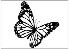 Flying Butterfly Outline by Best Photos Of Flying Butterfly Outline Flying Butterfly Template Printable How To Draw A