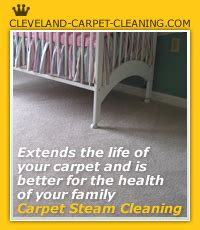 rug cleaning cleveland cleveland carpet cleaning 216 255 6905
