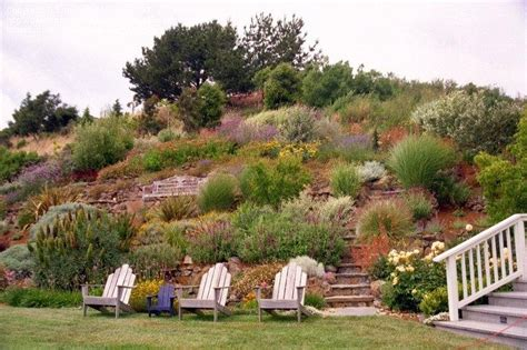 D Island Slop cottage garden design on a slope pdf