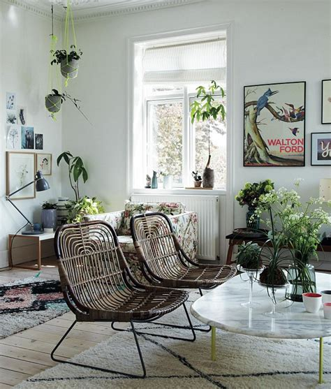 decorative plants for living room