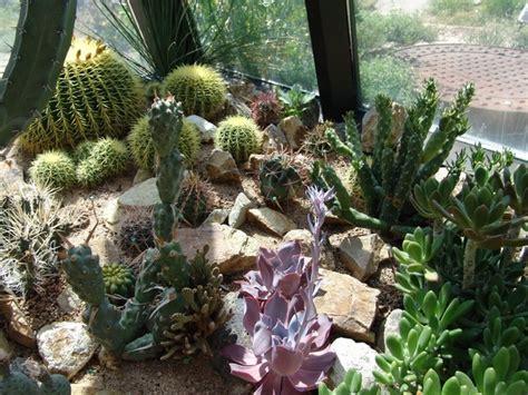 Cactus Rock Garden Indoor Cactus Garden Ideas Photograph Indoor Cactus Garden